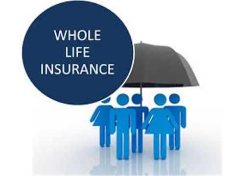 Find the Right Whole Life Insurance Policy